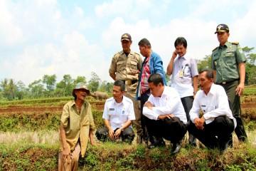 Kunjungan Menteri Pertanian