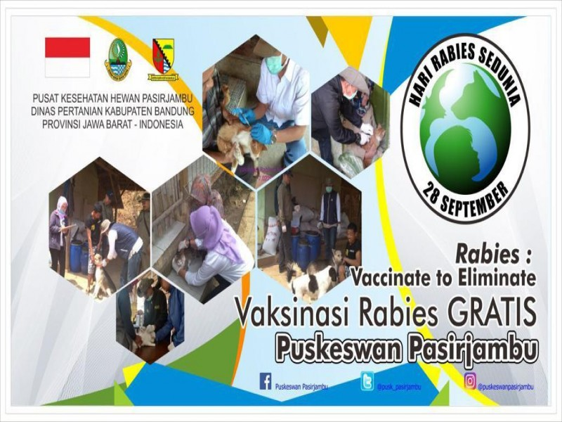 DISTAN - Kabupaten Bandung - Vaksinasi Rabies Gratis ...
